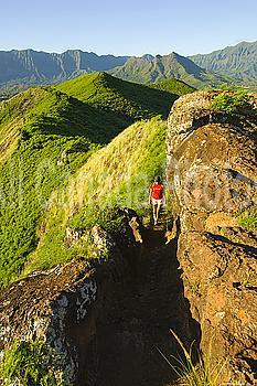 Hawaii, Oahu, East Oahu,  Lanikai, Kailua, Woman hiking.