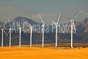 Power-generating windmills near Pincher Creek, Alberta, Canada.