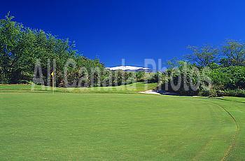 Hawaii, Big Island, Kohala Coast, Hapuna Golf Course, 7th Green, Par 3.