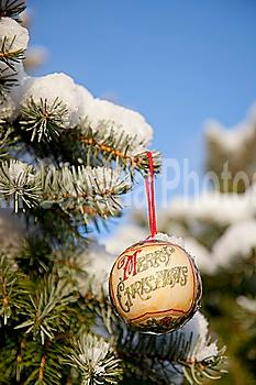 close-up of christmas ornament on snow-covered tree branch; whitburn, tyne and wear, england